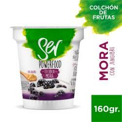 Yogur Descremado c/Colchón de Mora c/Jengibre Ser x 160 g.