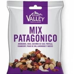Mix de Frutas Secas Patagónico Atuel Valley x 40 g.