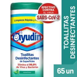 Toallitas Desinfectantes Fresca Ayudín  x 65 un.